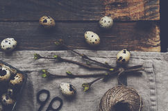 Quail eggs and branch with green leaves on wooden table Royalty Free Stock Photo