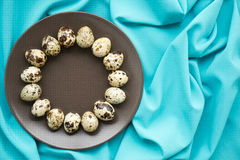 Quail eggs. In a brown plate royalty free stock images