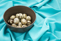 Quail eggs. In a brown plate royalty free stock photos