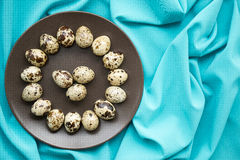 Quail eggs. In a brown plate royalty free stock photo