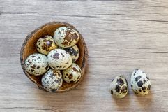 Quail eggs on brown wooden background. Flat lay, top view. Easter concept. Simple Easter flat lay still life with quail eggs on brown wooden background stock image