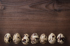 Quail eggs on the brown wooden table background Royalty Free Stock Image