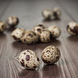 Quail eggs on the brown wooden table Stock Photos