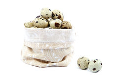 Quail eggs in a canvas bag on white background. Stock Photography