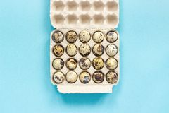 Quail eggs in cardboard box on blue paper background. Template Top view Copy space lettering, text or your design.  royalty free stock photography