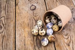 Quail eggs in cardboard box on wooden table. Studio Photon Royalty Free Stock Photo