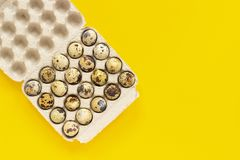 Quail eggs in cardboard box on yellow paper background. Template Top view Copy space lettering, text or your design.  royalty free stock image