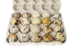 Quail eggs in a carton box Royalty Free Stock Photography