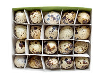 Quail eggs in a carton box. Isolated on white. Clipping path included Stock Photo