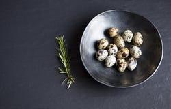 Quail eggs in ceramic black bowl on black ceramic background and. Quail  eggs in ceramic black bowl on ceramic background and green rosemary, may be used as Stock Photo