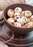 Quail eggs in ceramic bowl Stock Photography