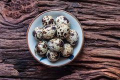 Quail eggs. In a ceramic bowl on old brown wooden surface background, selective focus. Top view Royalty Free Stock Photo