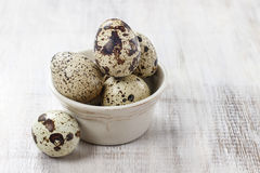 Quail eggs in ceramic bowl Stock Image