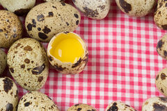 Quail eggs. On a checkered towel Stock Photography