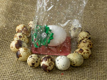 Quail eggs and chicken egg with a green bow around lying on a wooden table Stock Image