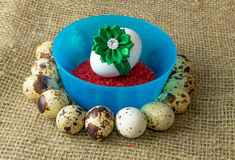 Quail eggs and chicken egg with green bow are in a circle around the plastic blue bowl of red salt on a wooden table Royalty Free Stock Images