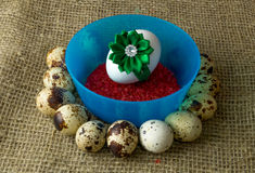Quail eggs and chicken egg with green bow are in a circle around the plastic blue bowl of red salt on a wooden table Royalty Free Stock Photography