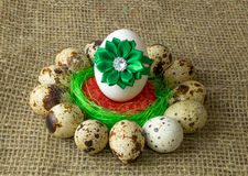 Quail eggs and chicken egg with green bow are in a circle around the plastic blue bowl of red salt on a wooden table Stock Photo