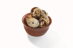 quail eggs in a clay bowl Stock Images