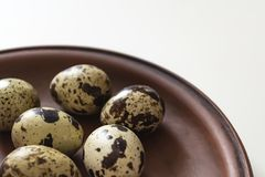 Quail eggs on clay plate on white background. Closeup photo.  Royalty Free Stock Photography