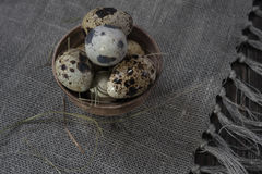 Quail eggs in clay pot on dark background Stock Photos