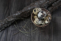 Quail eggs in clay pot on dark background Royalty Free Stock Photography