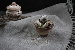 Quail eggs in clay pot on dark background Royalty Free Stock Images