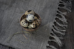 Quail eggs in clay pot on dark background Royalty Free Stock Photo
