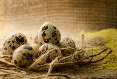 Quail eggs. Close-up on burlap background Stock Image