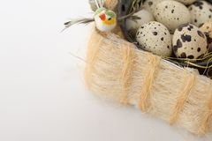 Quail eggs and bird on white . easter background. country style royalty free stock photos