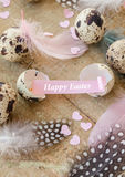 Quail eggs with colorful feathers. For easter royalty free stock images