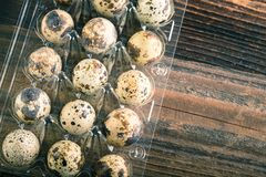 Quail eggs in the container. Organic quail eggs in the container on white background. Natural gourmet meal royalty free stock photos