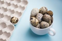Quail eggs in cup and cardboard packaging on blue background..Vegetarian organic food. Eco products cocept.  royalty free stock photos