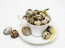 Quail eggs in cup. On a old wooden background Stock Photos