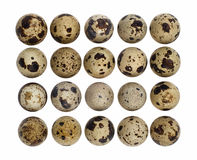 Quail eggs cutout. Twenty quail eggs top view isolated on white with clipping path Stock Photo