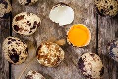 Quail eggs on a dark background Royalty Free Stock Photo