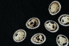 Quail eggs on a dark wooden background. Pattern. Elegant idea. Easter card. Stock Photo