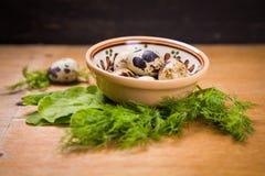 Quail eggs in dish Stock Photo
