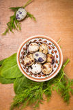 Quail eggs in dish. Some small quail eggs in dish with fresh dill and sorrel royalty free stock images
