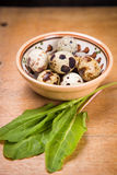 Quail eggs in dish. Some small quail eggs in dish with fresh sorrel royalty free stock image
