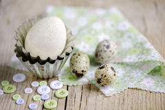 Quail Eggs and Duck Egg Royalty Free Stock Photos