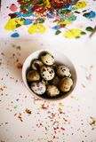 Quail eggs. Easter background. Quail eggs. Colorful Easter background Royalty Free Stock Photography