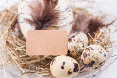 Quail eggs easter decoration Royalty Free Stock Photography