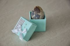 Quail egg in a box royalty free stock photography