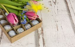 Quail eggs easter decoration royalty free stock photos