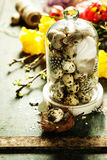 Quail eggs with easter decorations Stock Images