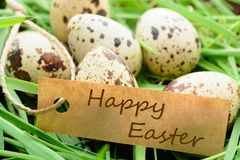 Quail eggs with Easter greetings on grass stock photo