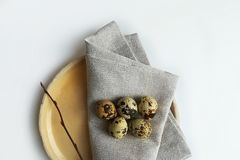 Quail eggs. stock photo