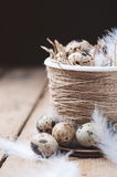 Quail eggs in Easter pot on a wooden table Stock Image