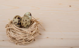 Quail eggs for easter Stock Photos